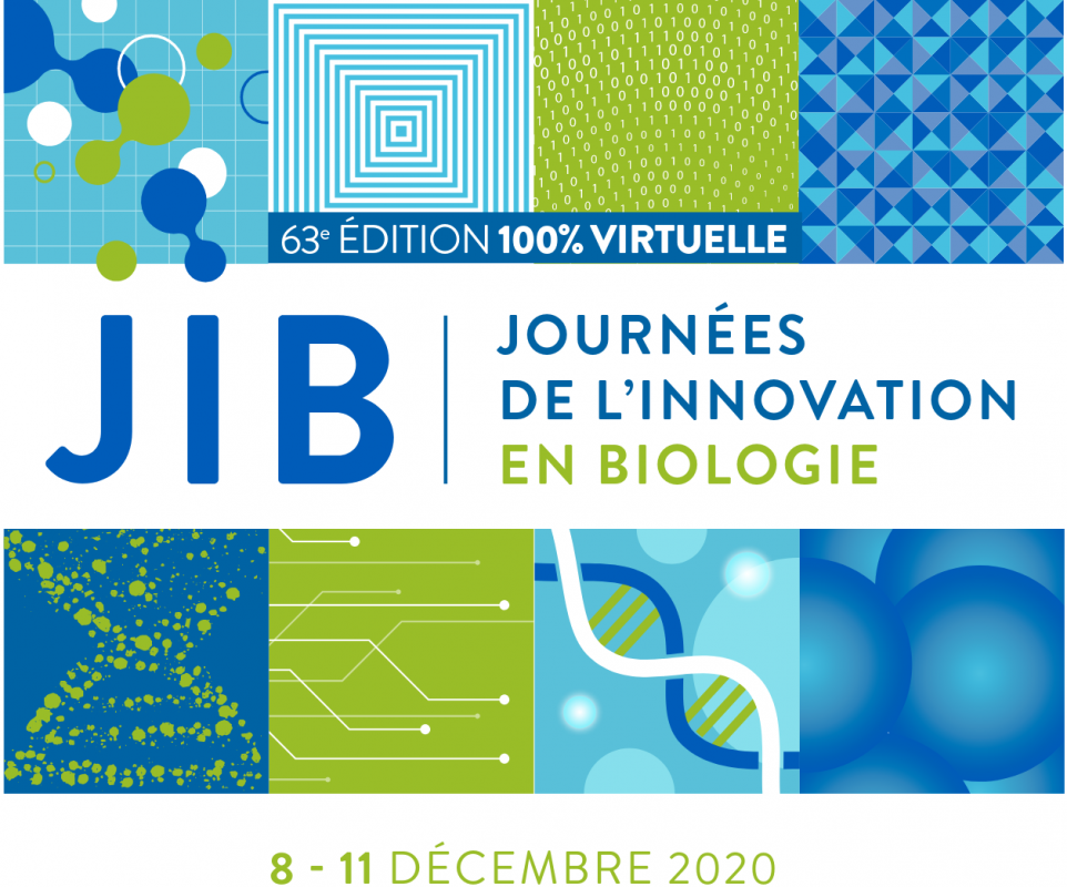 Logo Jib 2020 Edition Virtuelle
